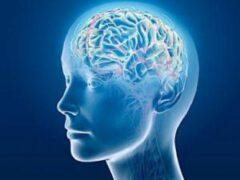 Что вызывает болезни старения в мозге?