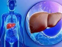 ЗОЖ: мифы о болезни печени и главные правила профилактики