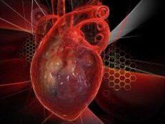 Употребление этого продукта два раза в неделю снижает риск смерти от болезней сердца