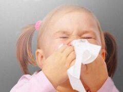 Почему городские жители чаще страдают от аллергии?