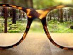 «Люди видят цвета очень ограниченно»: ученые показали, что не доступно нашим глазам