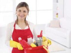 Надежность и конфиденциальность: секреты подбора домашнего персонала через агентство