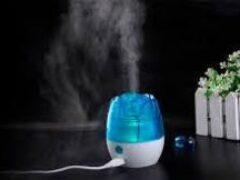 Как увлажнитель воздуха может спровоцировать грибок