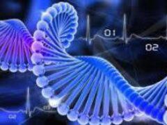 Школьник создал искусственную ДНК и ввел в свой организм