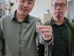 Американские ученые изобрели имплантат для похудения