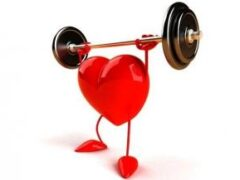 Здоровое сердце помогает быстрее принимать решения