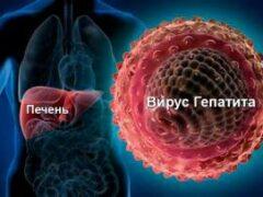 Гепатит остается самой опасной инфекцией в мире
