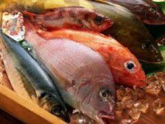 Ртуть в морепродуктах может вызывать аутоиммунные заболевания у женщин репродуктивного возраста