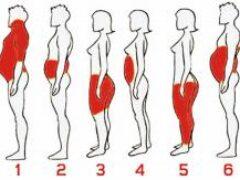 6 типов ожирения, и как справиться с каждым из них!