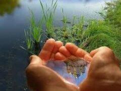 Семь восточных правил чистоты, чтобы изменить свою жизнь