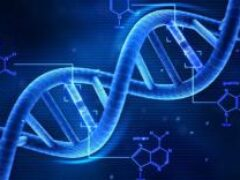 «Мусорная» ДНК может спровоцировать наркотическую зависимость