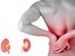 Названы 13 симптомов опасных болезней почек