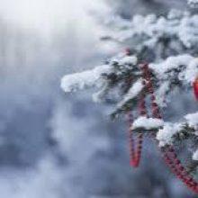 Новый год без снега и мороз на Рождество